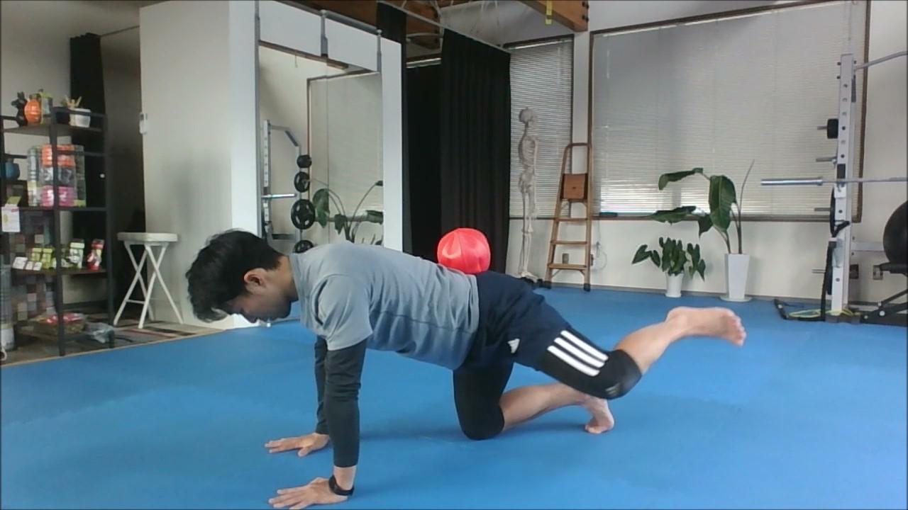 #389 腰痛改善・予防のトレーニング③